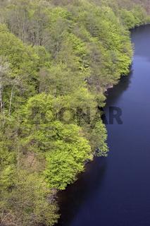 Blick von der Staumauer des Urftsees auf den Obersee, Obersee Lake