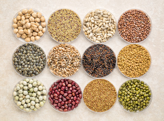 set of organic sprouting seeds and beans