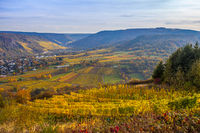 Colorful Autumn Moselle Landscape  Rheinland Pfalz Germany