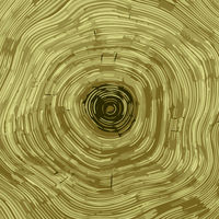 Cross section of tree stump background texture, vector Eps 10 illustration