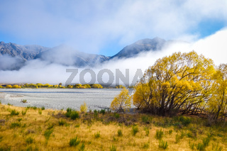 Yellow forest and river in New Zealand mountains