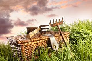 Wicker basket with garden tools in grass