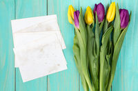 Bouquet of colorful tulips and blank cards