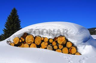 Holzstämme unter einer dicken Schneedecke