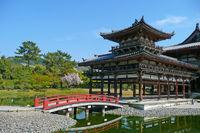 Byodoin Temple Bridge