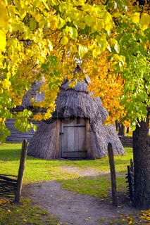 Yard Ukrainian villager Region Polesie