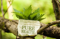 "Stinging Nettle in a jute bag with the word ""Pure Health"""