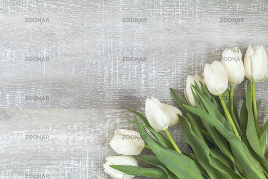 Many white tulips on light wooden surface