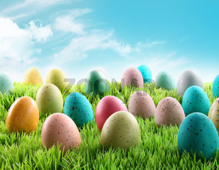Colorful Easter eggs in a field of grass