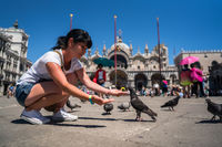 Woman tourist feeding pigeons in the square - St. Marks Square - Venice Italy