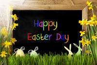 Sunny Narcissus, Egg, Bunny, Colorful Text Happy Easter Day