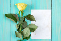 Yellow rose and blank card