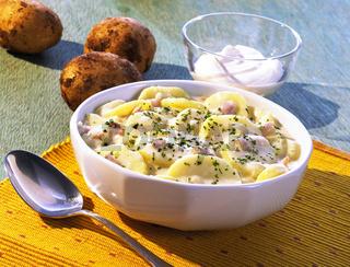 Bechamelkartoffeln