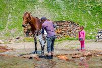Man washing a horse