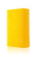 isolated sponge with shallow DOF