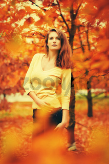 attractive girl pose in autumn colorful nature