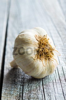 Fresh healthy garlic.