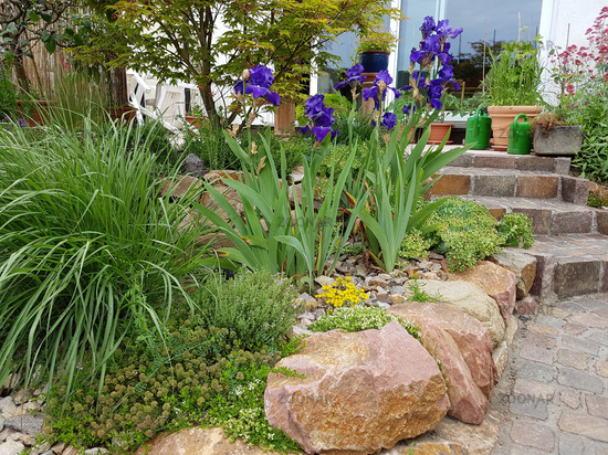 Photo Steingarten Trockenmauer Image 9479224