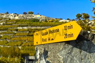 Wegweiser zum Lavaux Vinorama im Winzerdorf Rivaz in den Weinbergen des Lavaux,Schweiz