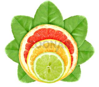 Cross a citrus fruits on green leaf
