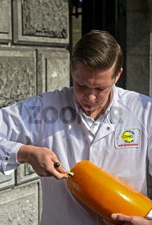 Käseprüfer der Genossenschaft CONO Kaasmakers tested einen Käselaib, Alkmaar, Niederlande