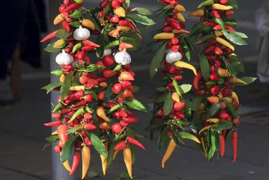 Peperonis und Knoblauch | Chilis and garlic