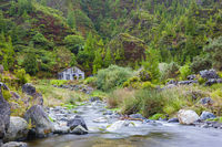 Small river near Lombadas, Azores