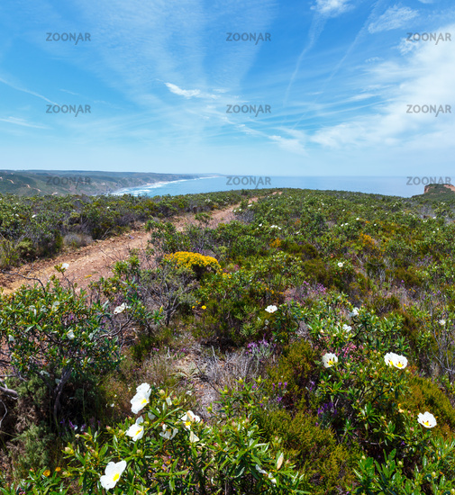 Summer Atlantic coast (Algarve, Portugal).