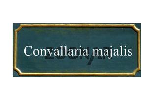 schild Maigloeckchen,Maiblume,Marienlilie,Convallaria majalis