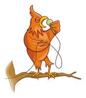 Orange singing canary bird