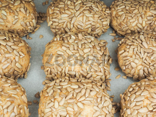 Closeup of freshly made sunflower seed buns on a waxed paper tray at close-up