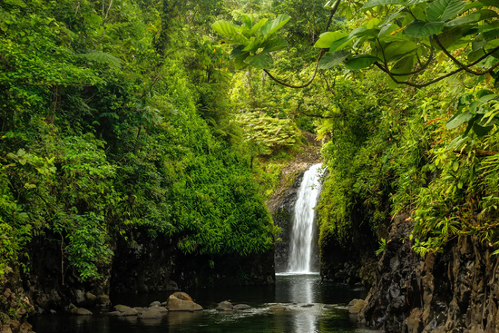 Wainibau Waterfall at the end of Lavena Coastal Walk on Taveuni Island, Fiji