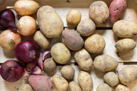 Potatoes and other root vegetables in a wooden box