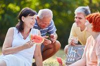 Gruppe Senioren beim Picknick