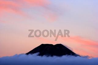 Mount Ngauruhoe, perfekt geformter Vulkan Mount Ngauruhoe ragt aus der von bluehendem Heidekraut bedeckten Ebene heraus, Im Herbst, der Tongariro Nationalpark ist Weltnaturerbe und wurde als Drehort fuer viele Szenen der 'Herr der Ringe' Triologie verwend