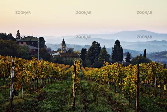 The wine village of Lilliano, Tuscany, Italy