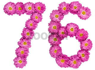 Arabic numeral 76, seventy six, from flowers of chrysanthemum, isolated on white background