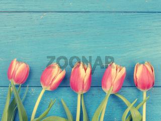 Beautiful tulips, springtime background