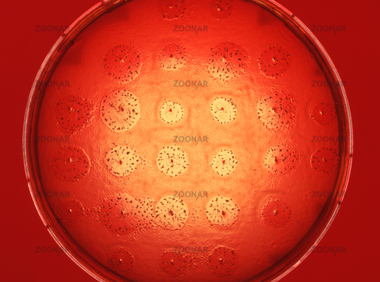 science with biological test in laboratory