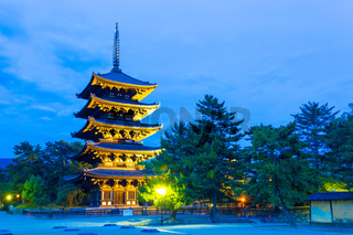 Kofuku-Ji Five Storied Pagoda Lighted Evening H