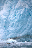 View of a Glacier in Alaska with Seals on Ice