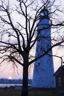 Tree, Lighthouse and sunrise