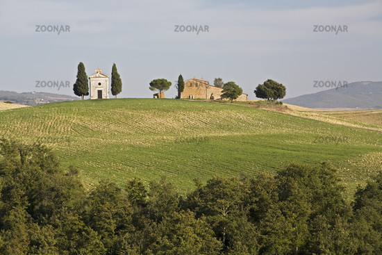 Farm with a small chapel in the Crete, Tuscany, farm with a smal chapel, Tuscany
