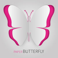 Paper butterfly pink