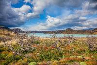 Torres del Paine Biosphere Reserve