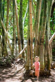 Boy at bamboo