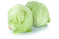 Eisbergsalat Salat frisch Gemüse Freisteller freigestellt isoliert