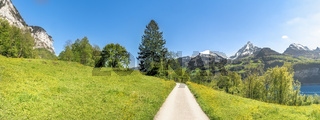 Road through a meadow in the Swiss Alps
