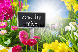 Sunny Spring Flower Meadow, Zeit Fuer Mich Means Time For Me