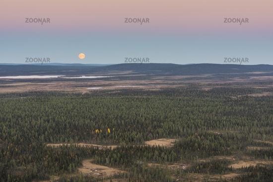 Moonrise, Muddus National park, Lapland, Sweden.